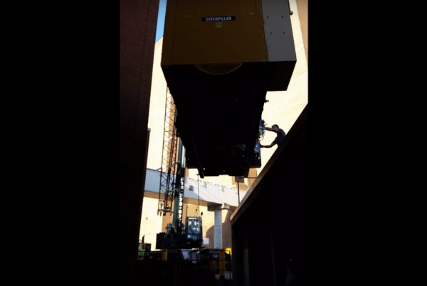 Mullins Rigging video cat generator install