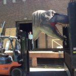 Mullins Rigging Dino